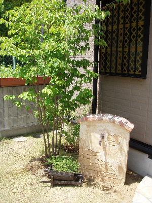 2007_0605_032.JPG