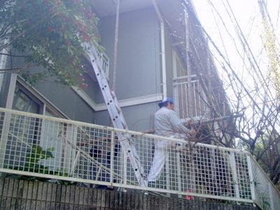 fukurokutani%20nakamura16.JPG