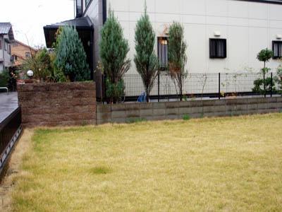 hamaguchi10.JPG