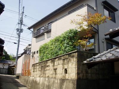 hasegawa06.JPG