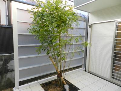katanoshihoshida8%20shirai55.JPG