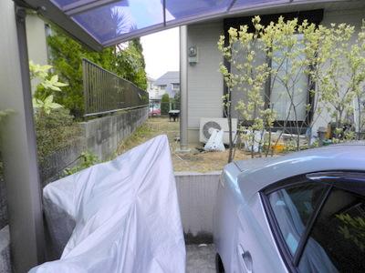 kidugawashikabutodai3%20araragi03.JPG