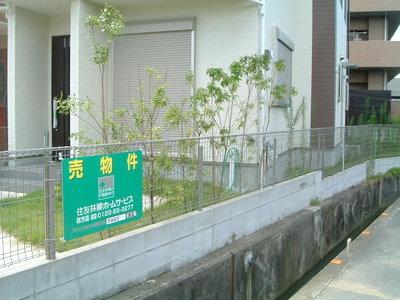 nagaomotomati2%20nishihata06.JPG