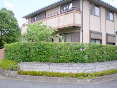 narashisahodai2%20matuoka10.JPG