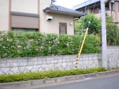 narashisahodai2%20matuoka12.JPG